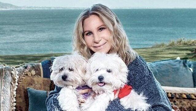 Mulher com seus dois cachorros
