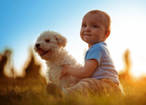 Os benefícios da convivência entre animais e bebês