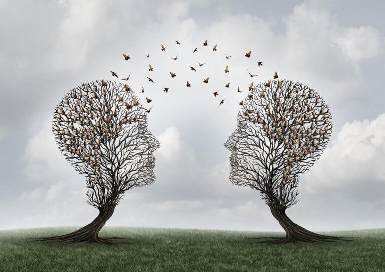 Conexões entre dois cérebros