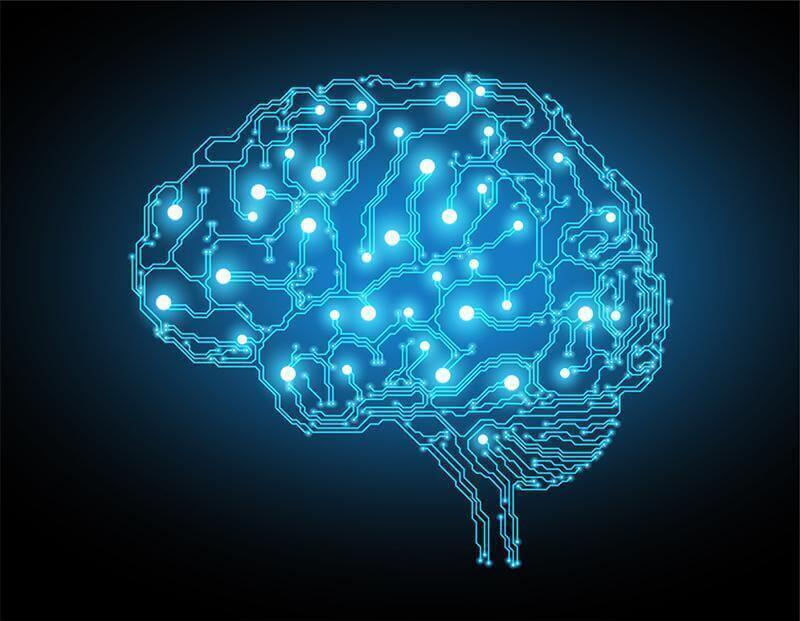 Brenda Milner: uma vida dedicada à neuropsicologia