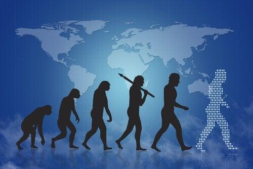A história da evolução humana