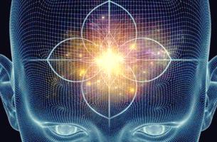 Glândulas pituitária e pineal: funções e características