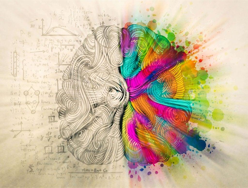 Hemisférios cerebrais
