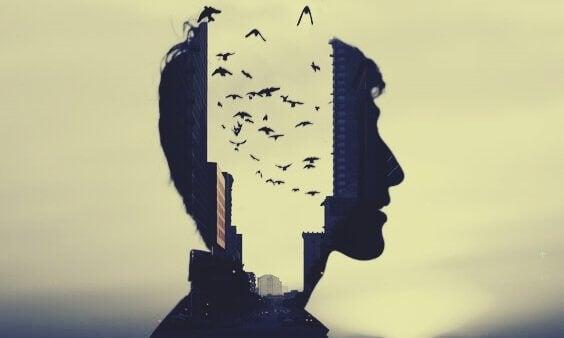 Pássaros voando no meio de cabeça
