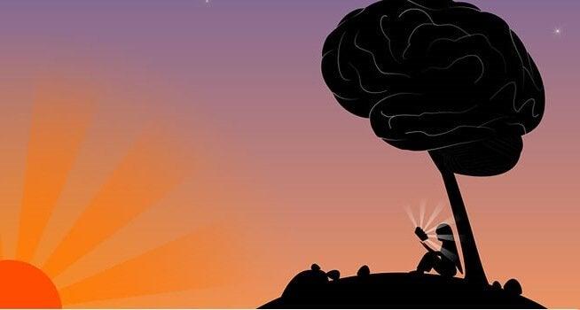 Cultive a inteligência e a sabedoria
