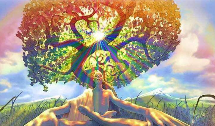 Árvore simbolizando o zen