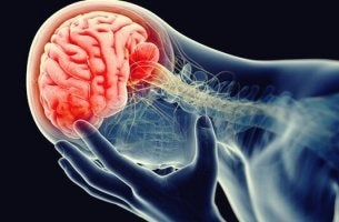 Teoria inflamatória da depressão