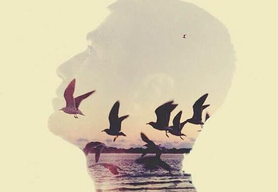 Reflexo de homem com pássaros voando