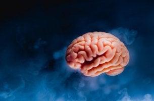 Tsunami cerebral: o que acontece no cérebro antes de morrer