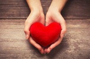 Dar amor por meio do voluntariado