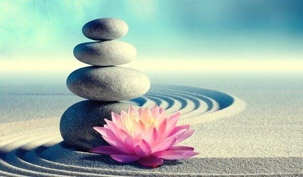 7 mandamentos zen para mudar de vida