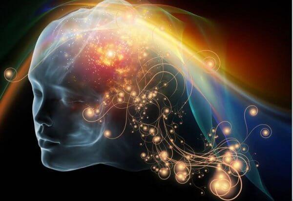 O efeito do triptofano e da serotonina