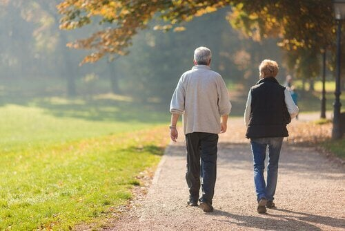 Casal idoso caminhando