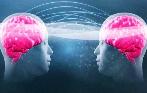Triptofano e serotonina: descubra como aumentar o seu bem-estar