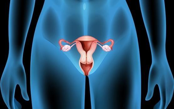 Cistos ovarianos: sintomas, causas e tratamentos