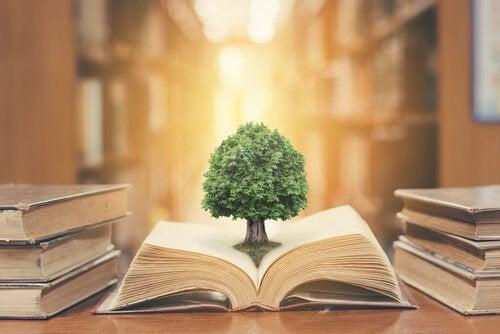 A beleza da leitura