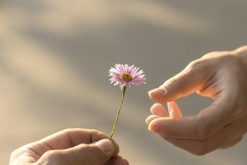 Pessoa dando flor a outra