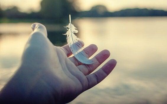 Mão segurando pluma