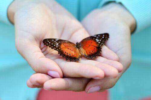 Mão com borboleta