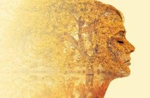 Recomendações pararealizar um processo de introspecção