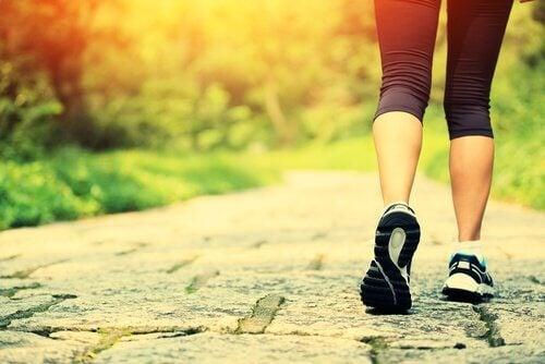 5 benefícios de caminhar