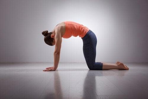Postura de ioga para aliviar a dor nas costas