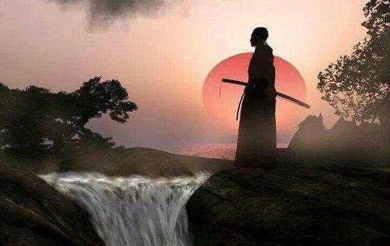Samurai observando a natureza