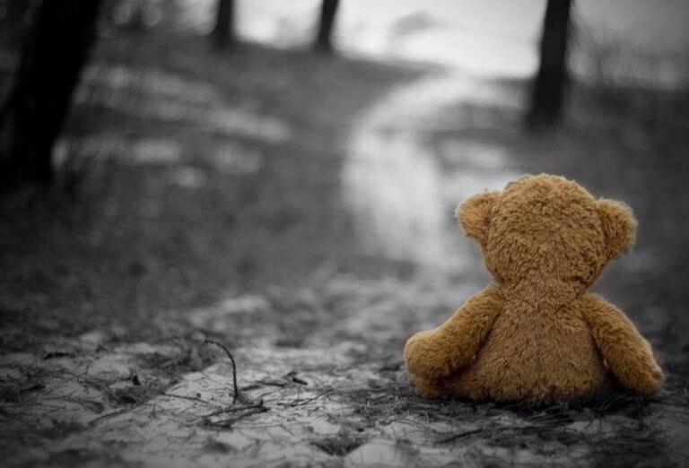 Ursinho de pelúcia sozinho na floresta