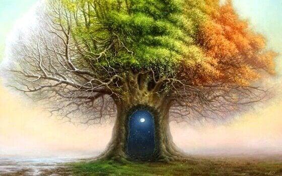 O teste da árvore