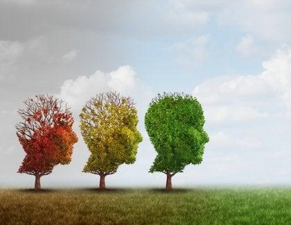 Árvores em forma de cabeças