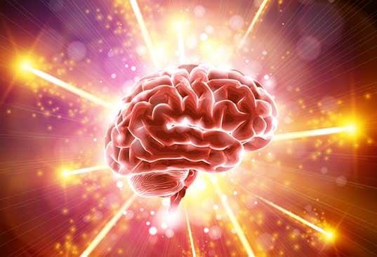A força do cérebro humano