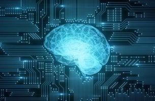 Conexionismo, um modelo de funcionamento neuronal