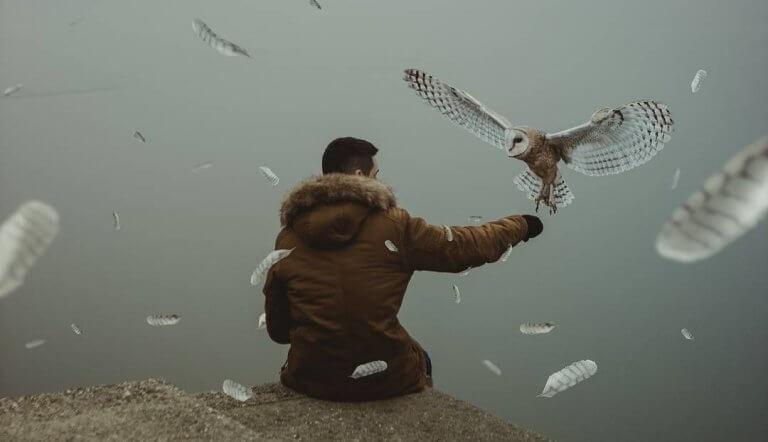 Homem recebendo pássaro