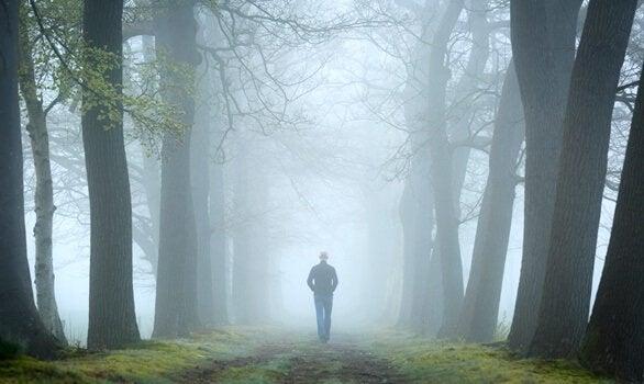 Teste do bosque, um exercício da psicanálise relacional