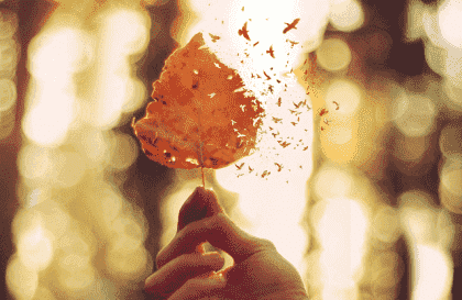5 dicas para expressar a dor emocional