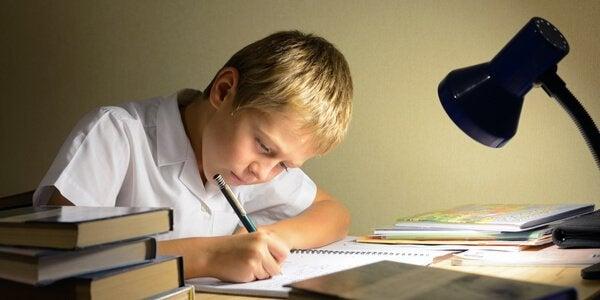 Menino fazendo dever de casa