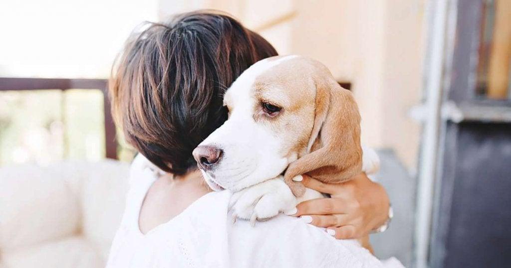 Mulher abraçando seu cachorro