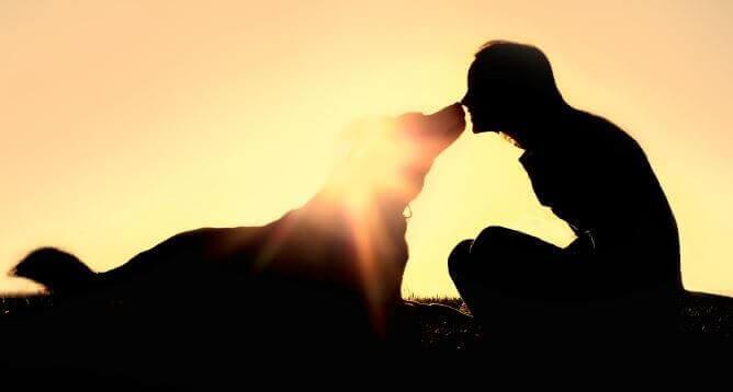 Mulher com seu cachorro