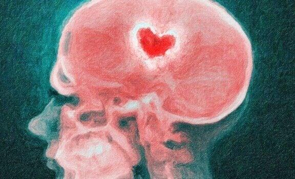 O cérebro diante de uma separação: a ciência dos corações partidos