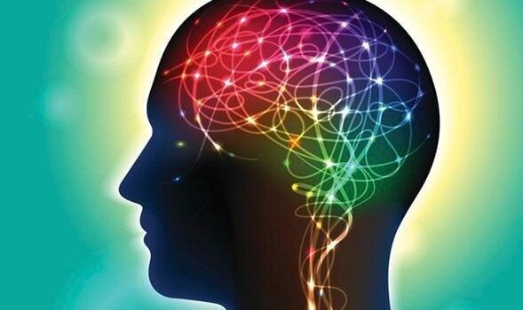 Podemos esculpir o cérebro à nossa maneira