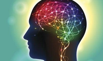 Anandamida, um neurotransmissor que gera felicidade