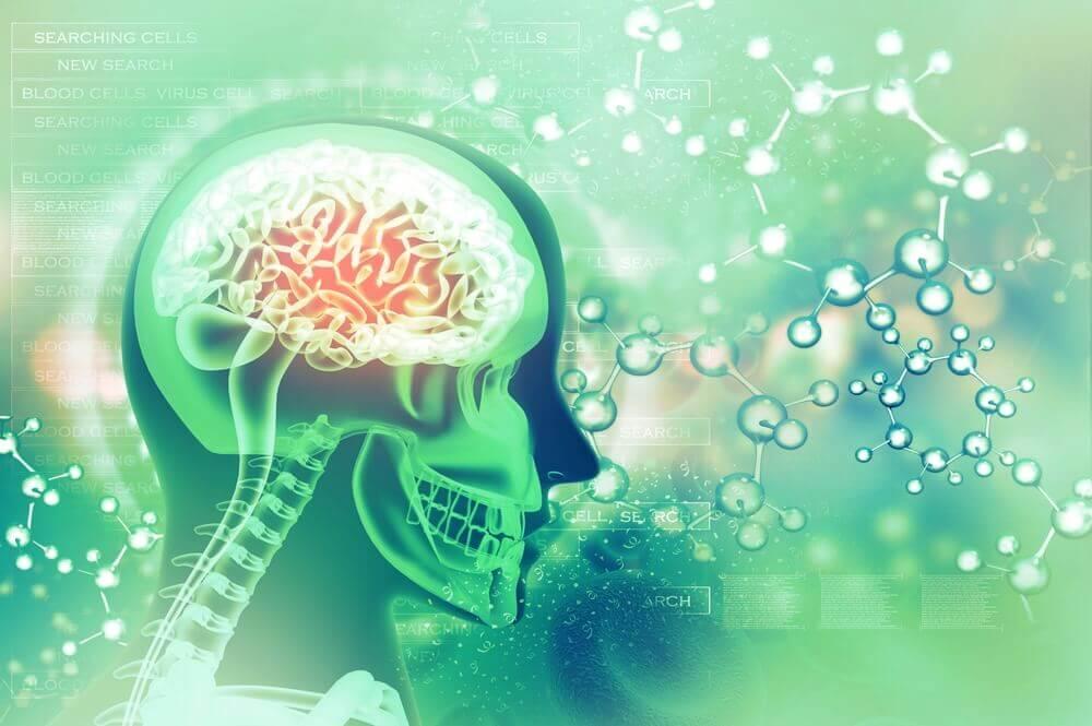 O ácido fólico pode melhorar o nosso humor