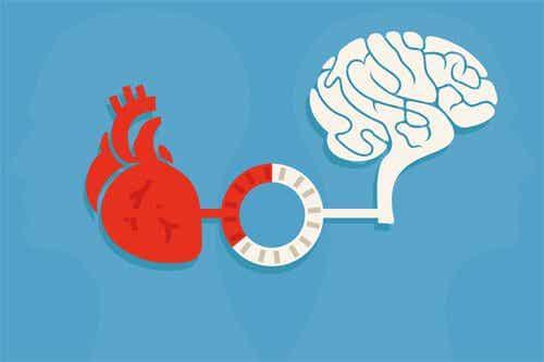 Razão e emoção: o equilíbrio que produz boas decisões