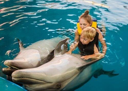 Criança fazendo terapia com golfinhos