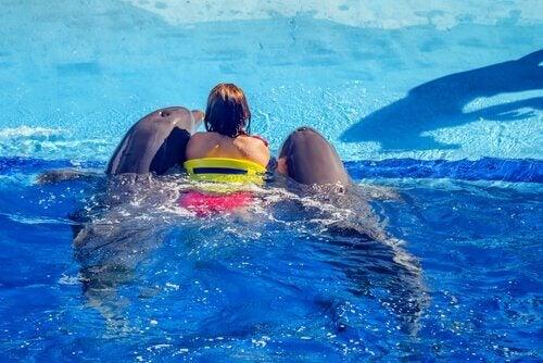 Terapia com golfinhos
