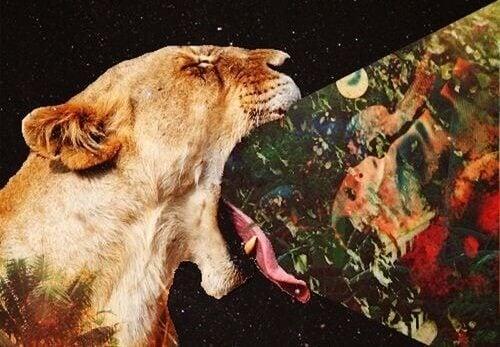 Imagem saindo da boca de um leão