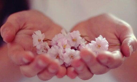 Mãos segurando flores representando a abundância