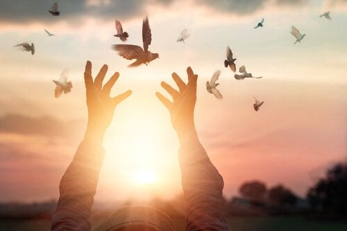 Liberdade para manter a paz interior