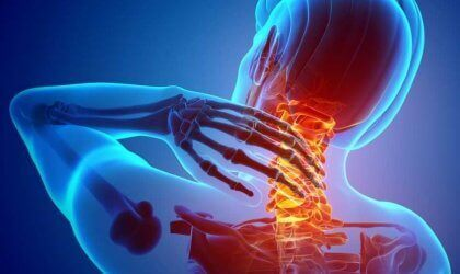 Nociceptores: os receptores de dor