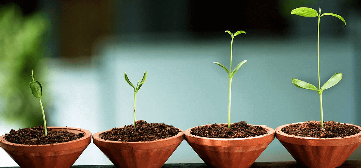 Crescimento pessoal